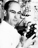 Albert Hofmann's accidental discovery turned on a generation