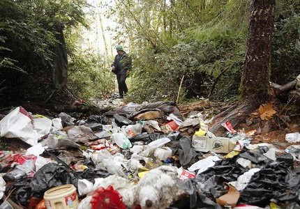 Wildlife technician Aaron Pole surveys a forest trashed by growers